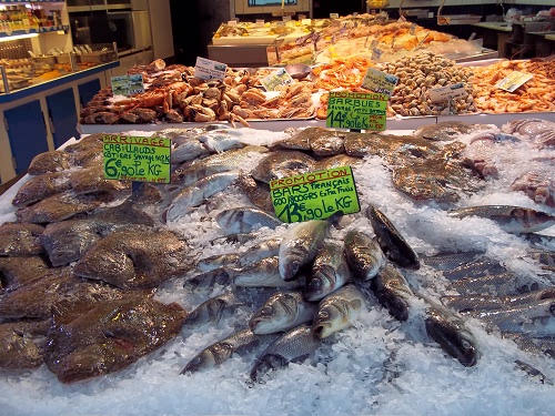French fish market, Le Touquet