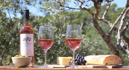 wine tasting france