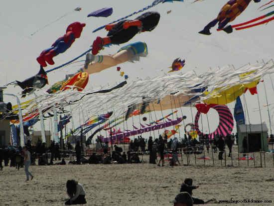 kite festival berck sur mer