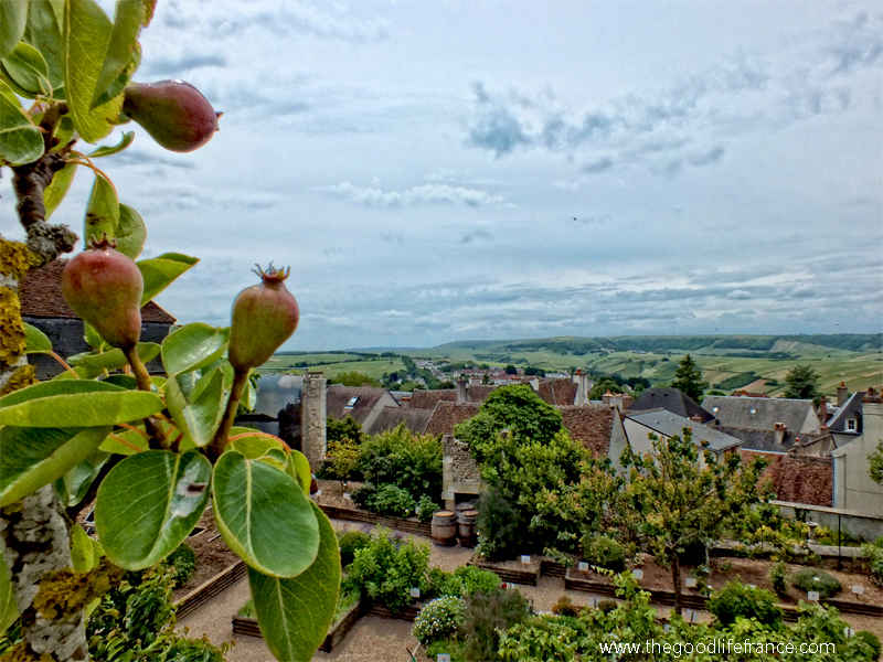 View from a hill top terrace over the vineyards of Sancerre, Loire Valley