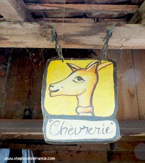 goats-cheese-chevrerie