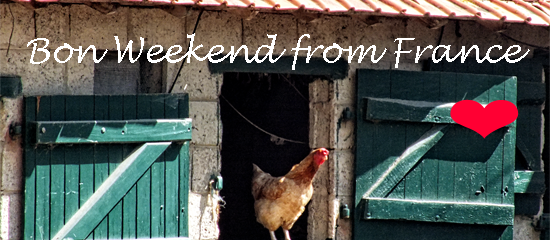 Alarm clock Birds and chickens and more newsletter from France