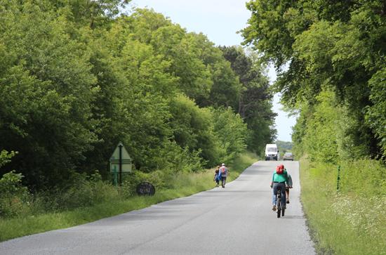 Opal-Coast-road-cycling