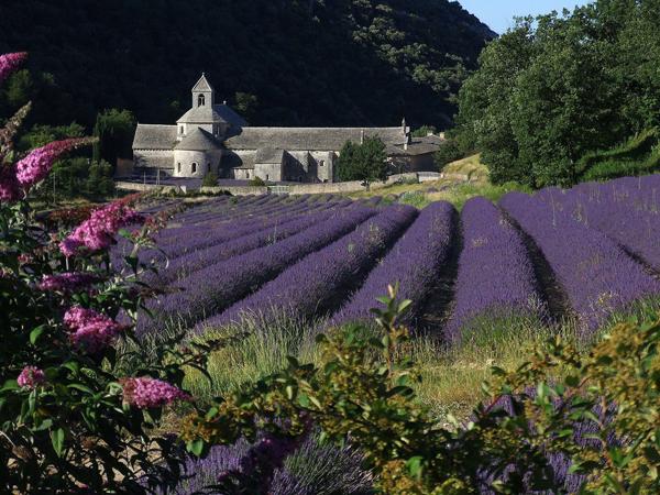Abbaye_de_Sénanque Gordes Provence