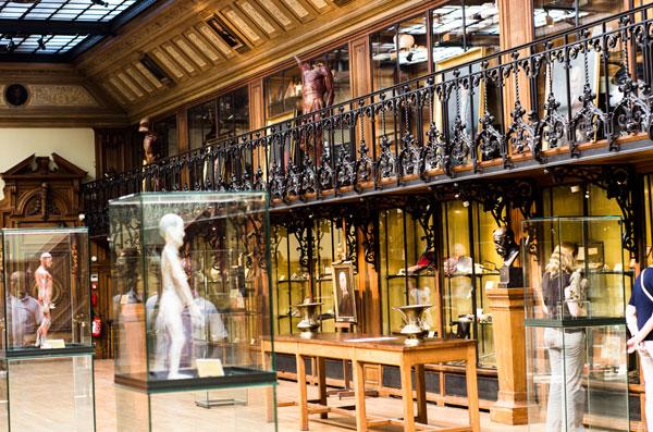 Paris_Medical_Museum_inside