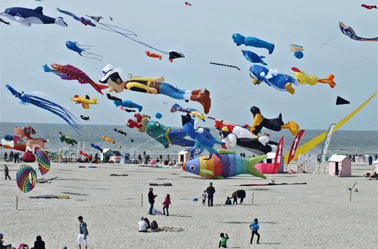 berck-sur-mer-kite-festival