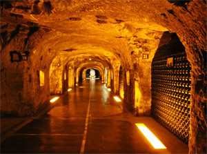 moet et chandon cellar