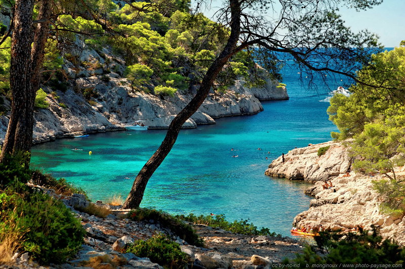 View of a secluded bay surrounded by limestone cliffs covered in bright vegetation, Calanques, France