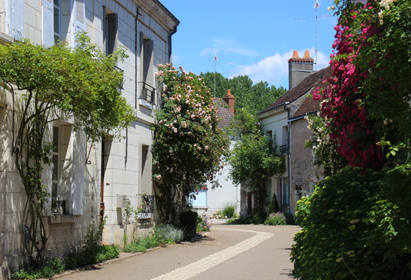 Chedigny Rose Village Loire Valley France The Good Life