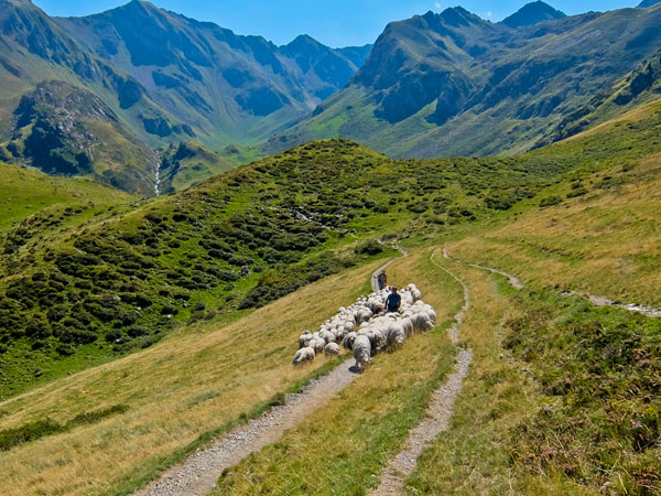 hiking-in-the-pyrenees