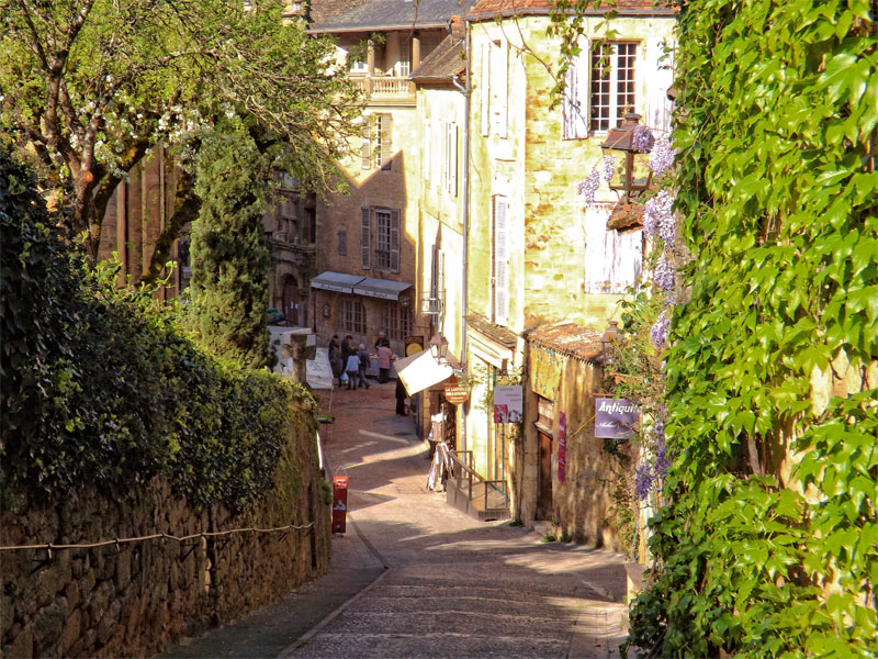 Hilly road in Sarlat, Dordogne, lined with ancient houses, vines creeping up their walls