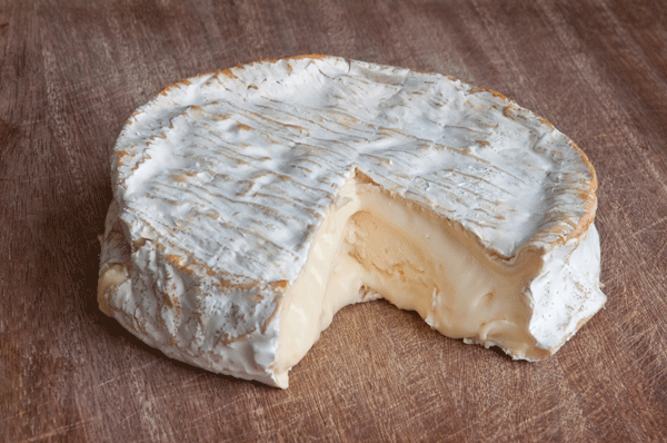 coulommiers-cheese