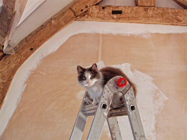 hiring-builders-in-france