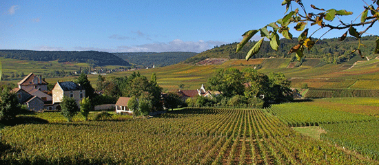 Why Burgundy should be top of your house hunting in France list