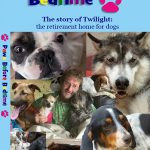 Paws Before Bedtime The story of Twilight: the retirement home for dogs