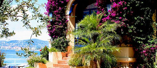Hotel Belles Rives Antibes southern France
