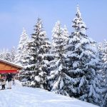 Guide to family skiing in Samoëns, French Alps