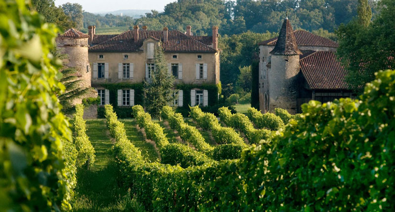 Ancient house surrounded by vineyards in Gascony France