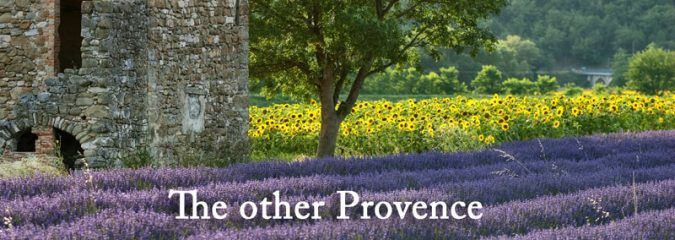 Drome Rhone Alpes | Lavender fields, vineyards and medieval villages