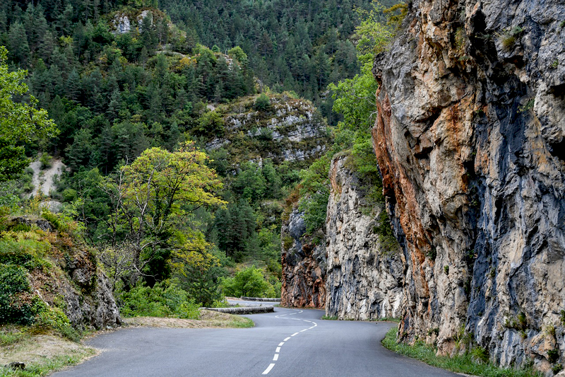 Empty road through a gorge lined with cliffs and trees