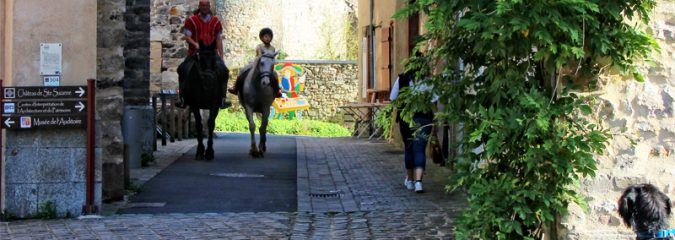 Buying Equestrian properties in France