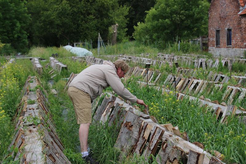 A British Snail Farmer In France The Good Life France The Good Life France