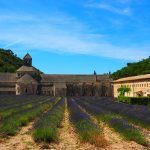 The history of the Abbaye de Senanque, Provence