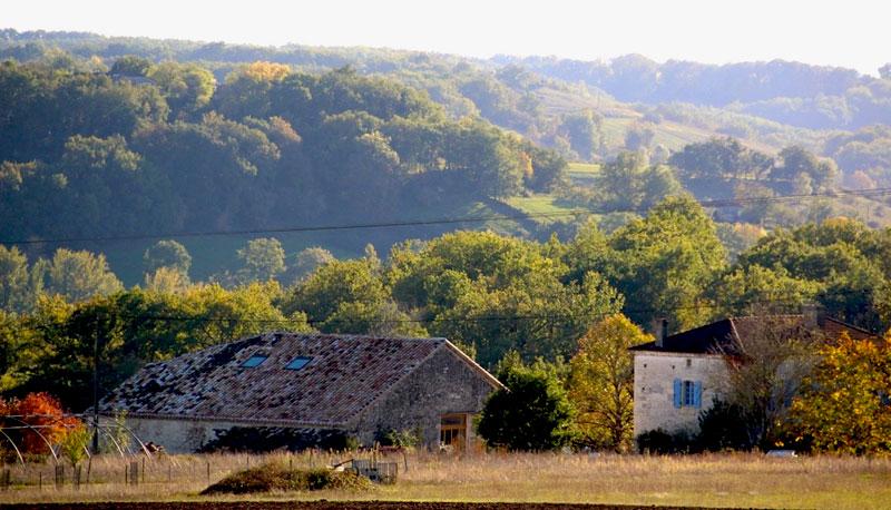 Autumnal scene in the Tarn et Garonne region of France - greens and oranges