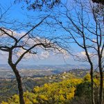 Discover Grasse, Provence capital of perfume in France
