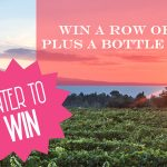 Win a row of Vines in the Rhone Valley, Provence, southern France