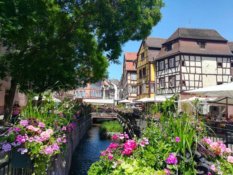 A small river running through Colmar in Alsace lined with half timer houses and dripping with flower baskets