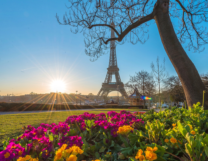 Eiffel Tower Paris under a blue sky, flowers in bloom around it, perfect spring day
