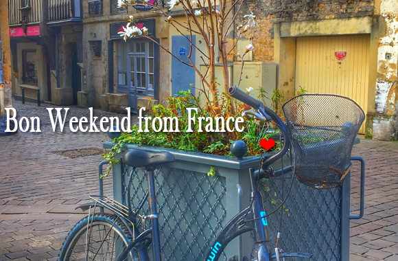 Bike leaning against a large tub filled with early spring plants in a cobbled street in Normandy