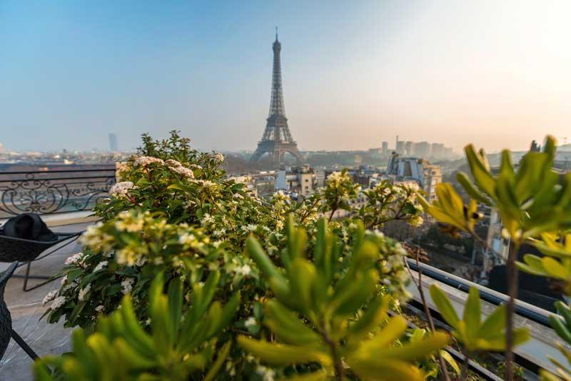 Eiffel Tower under a sunny sky