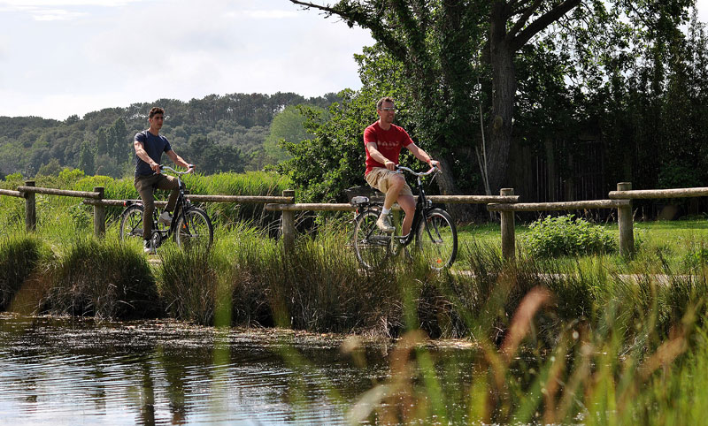 Two men cycle through lush green countryside along a stream near Les d'Olonne, Pays de la Loire
