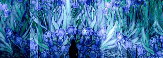 Carrieres de Lumieres, sound and light shows Paris and Provence