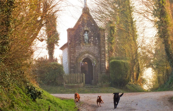 Three dogs playing on a hill, at the top of which is a small brick chapel with a statue of a saint at the top