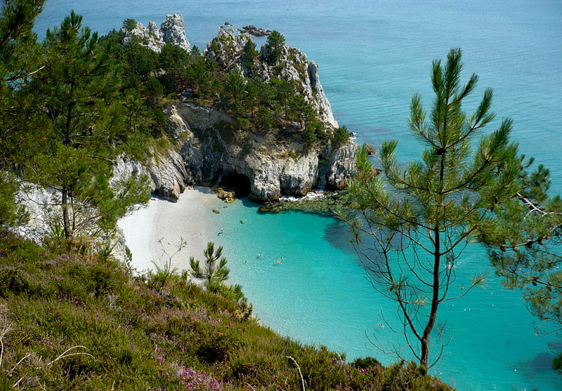 A secret bay with white sands, pine trees and turquoise sea on the coast of Brittany