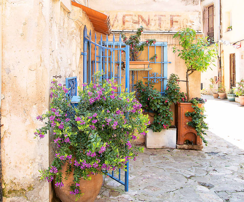 Terracotta tubs of flowers in bloom enhance a cobbled street lined with ancient houses in Provence