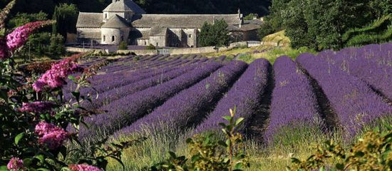 Provence Holidays | The best Provence holiday homes