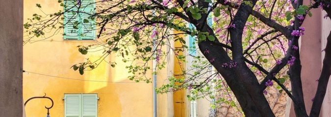 Picture perfect Provence in the spring