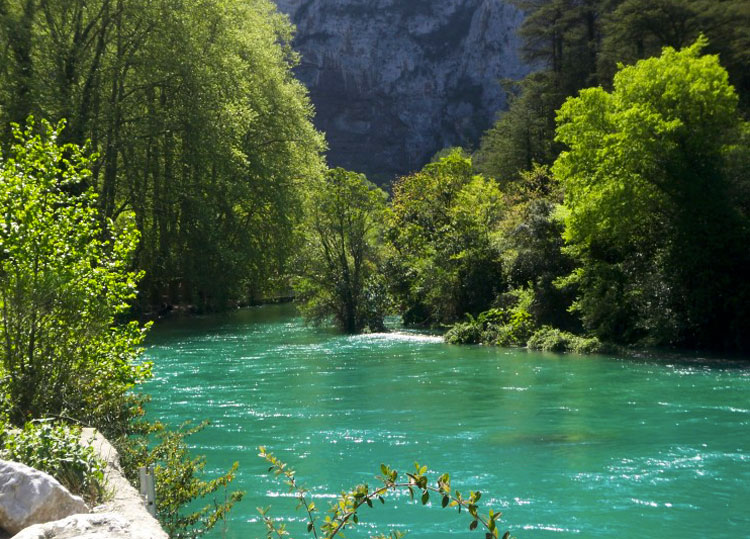 The river Sorgue flowing fast past tree lined banks