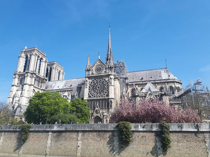 The Cathedral of Notre Dame Paris, trees in blossom around it, taken before fire broke out on 15 April 2019