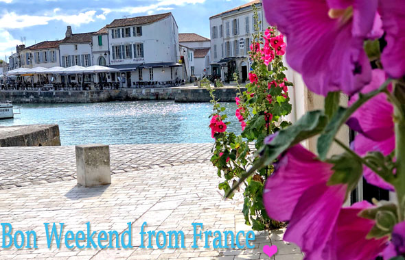 Hollyhocks flowering on a street at the harbour of Saint Martin de Re, a town on the Ile de Re, France