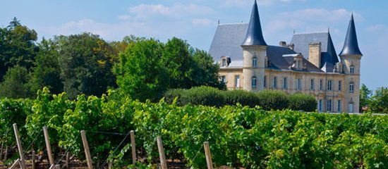The best Bordeaux Wine and discovery Tours