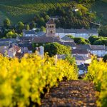 What to see and do in Beaujolais Burgundy