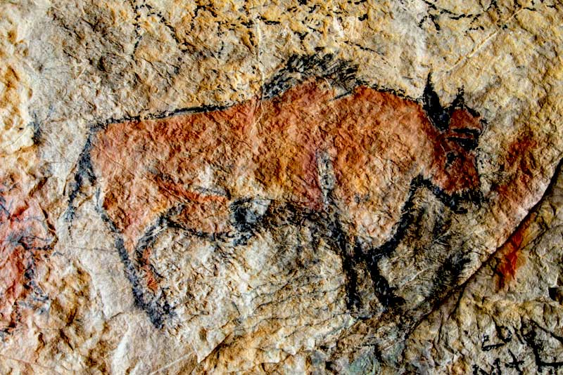 Prehistoric art, an animal drawn on a wall in a cave at Lascaux, Dordogne