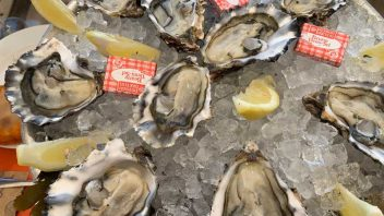 All about French oysters