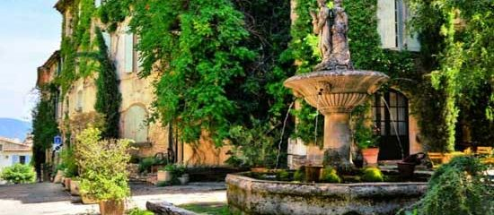 South of France and Lavender tour of Provence