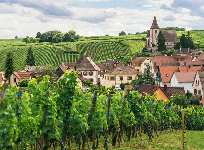 Vineyards surround a tiny town in Burgundy, houses with terracotta roofs and an old church